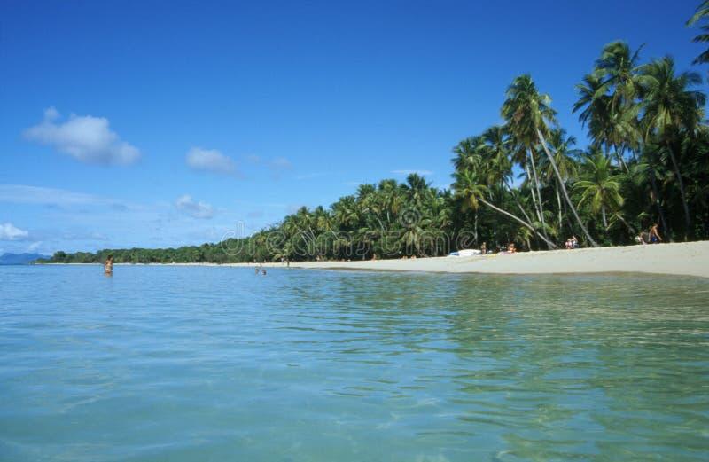 plażowy carribean zdjęcia stock