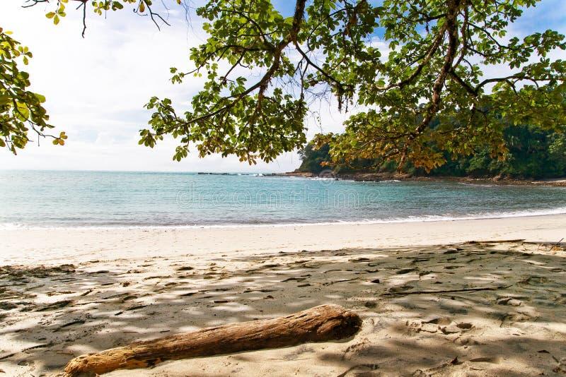 plażowy costa przodu rica fotografia royalty free