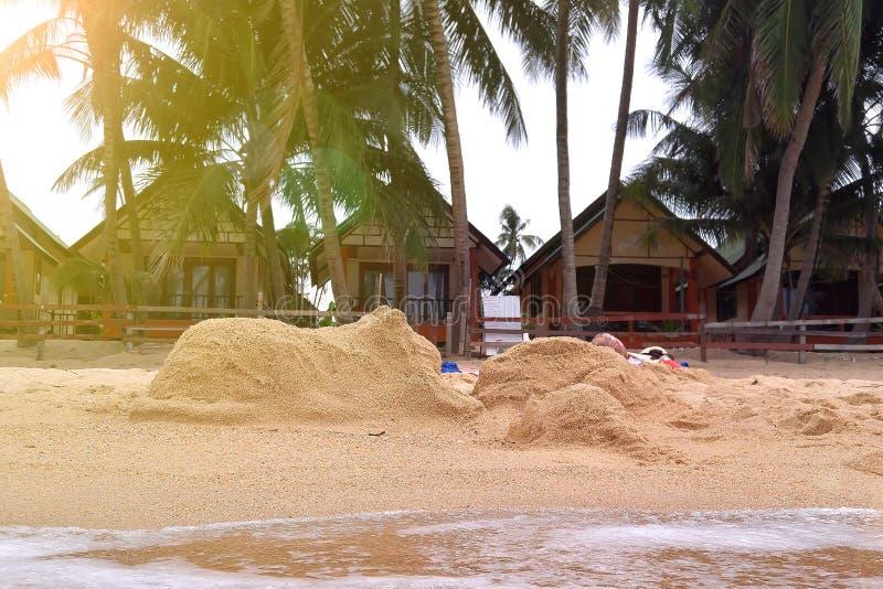 Plażowy czas wolny Postacie królik i kot robić piasek na tropikalnej plaży Palmy i bungalowy na tle, fali i wodzie, obrazy stock