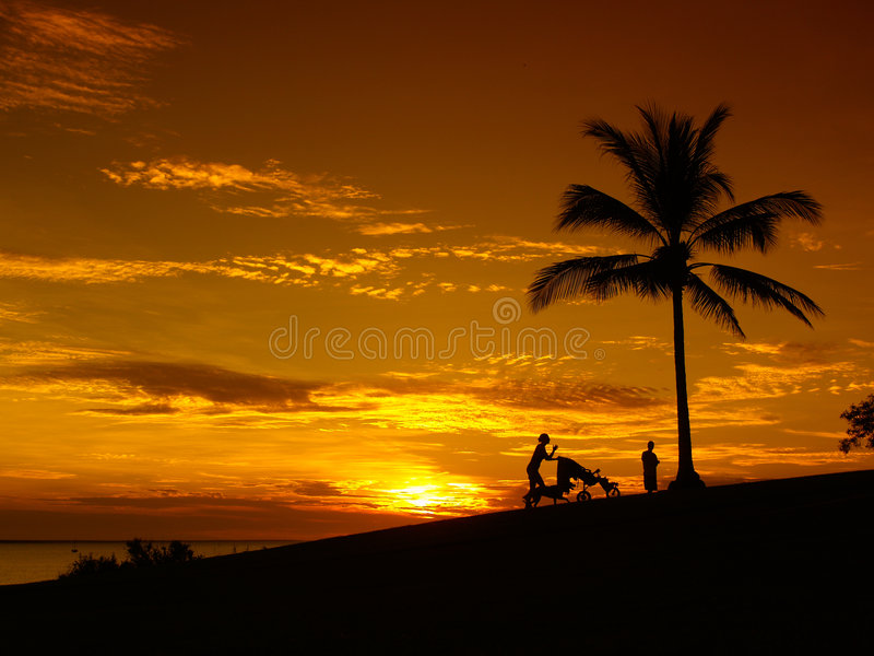 plażowy Darwin palmy zmierzch fotografia stock