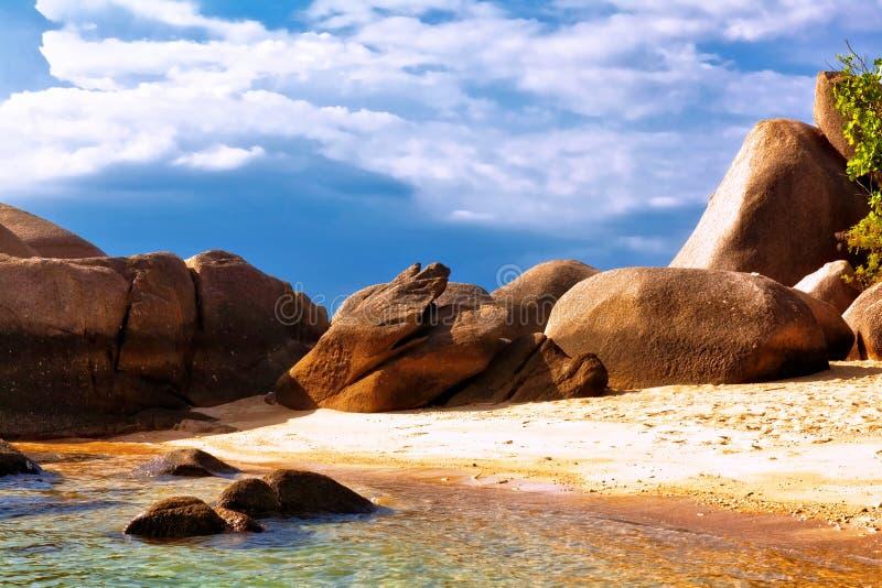 plażowy egzotyczny tropikalny fotografia royalty free