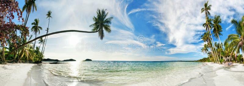 plażowy egzotyczny tropikalny obraz stock