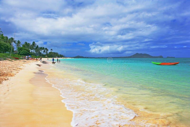 plażowy hawajska obrazy stock