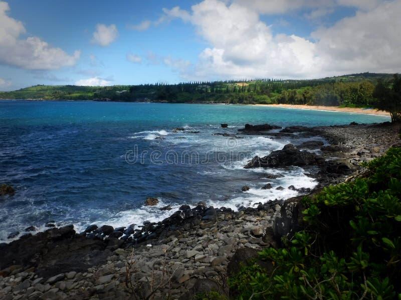plażowy hawajska zdjęcia stock