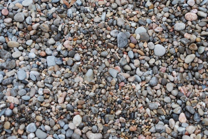 plażowy kamienisty fotografia royalty free