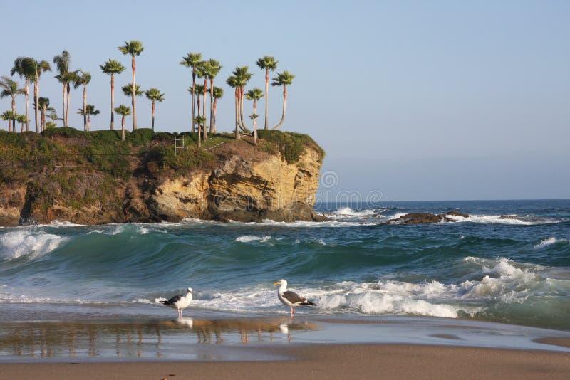 plażowy Laguna zdjęcie stock