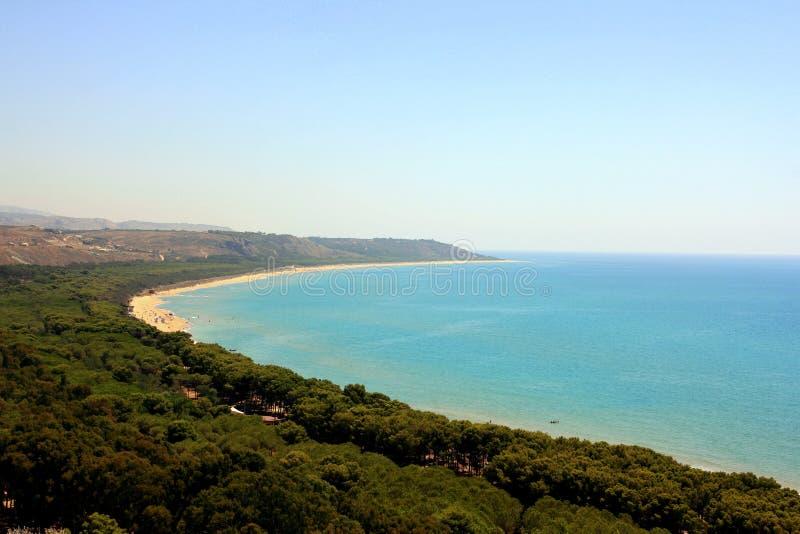 plażowy lasowy sosnowy denny Sicily zdjęcie royalty free
