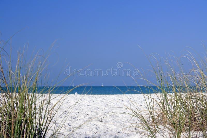 plażowy mały zdjęcie royalty free