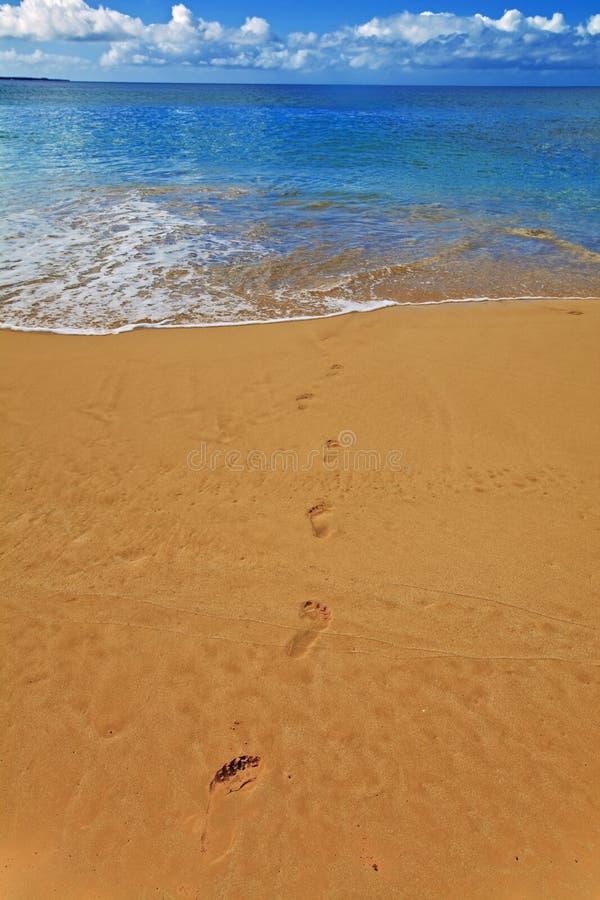 plażowy makena Maui zdjęcie royalty free