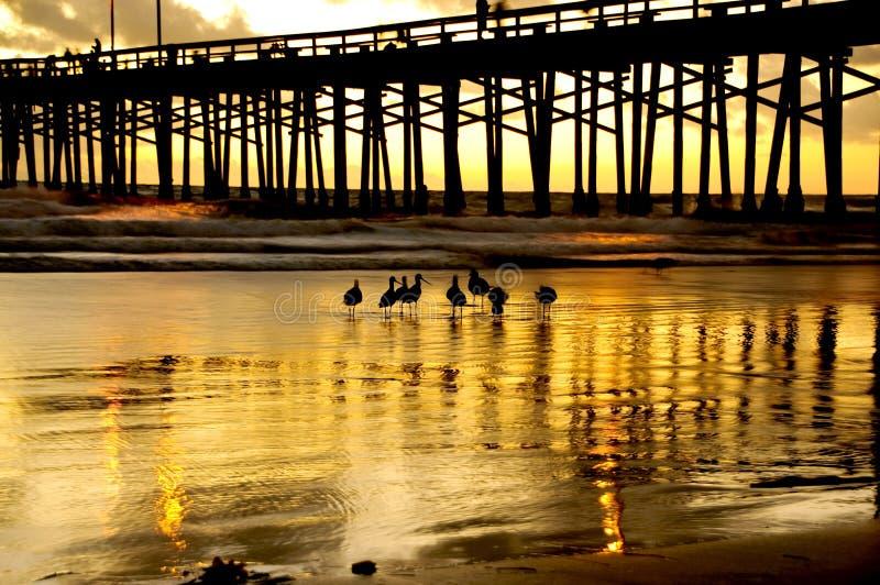 plażowy Newport zdjęcie royalty free