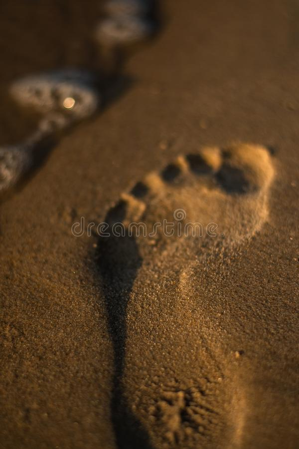 plażowy nożny druku piaska lato śladów wakacje fotografia royalty free