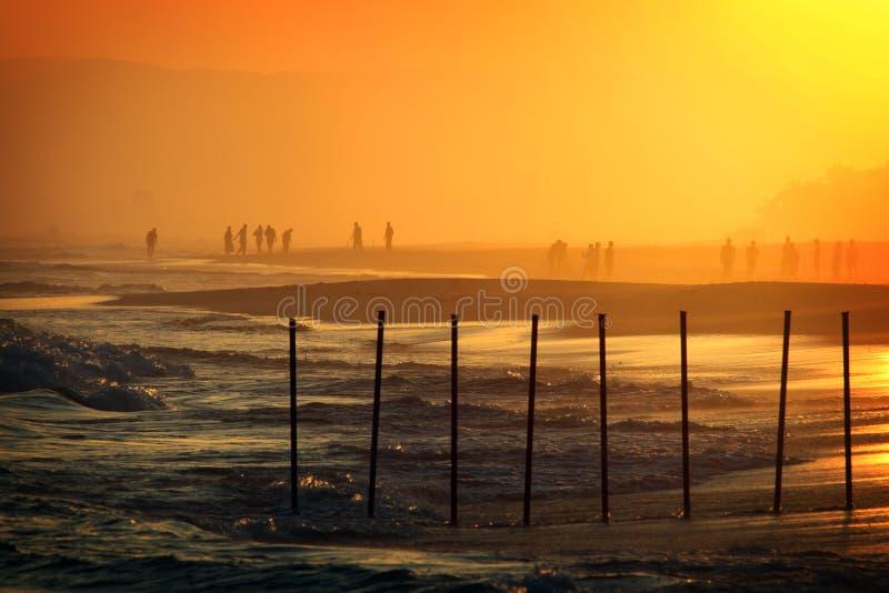 plażowy Oman salalah zmierzch zdjęcia royalty free