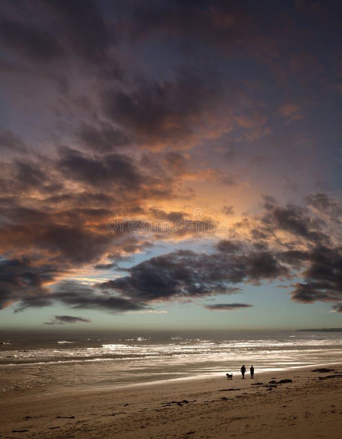 plażowy pary psa zmierzchu odprowadzenie obraz royalty free