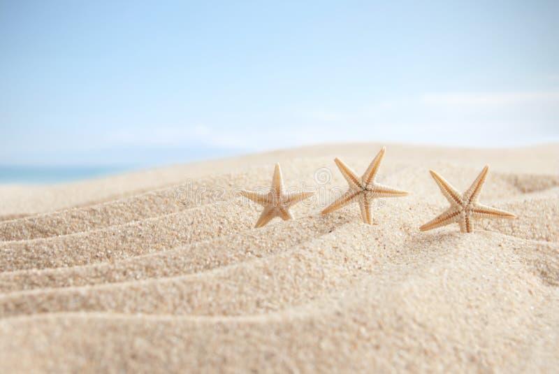 Plażowy piaska i nieba tło zdjęcia royalty free