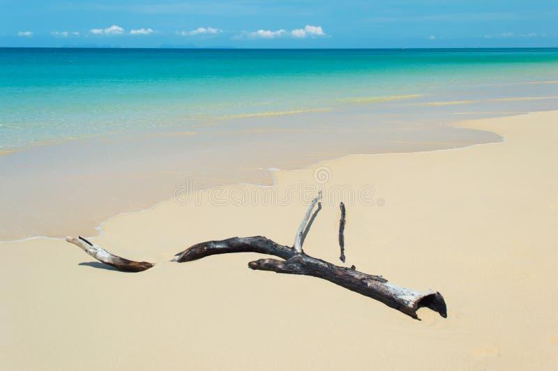 Plażowy tropikalny morze obrazy royalty free
