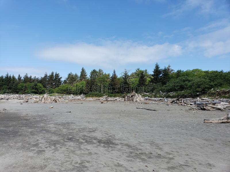 Plażowy tworzenia Oregon wybrzeże obraz royalty free