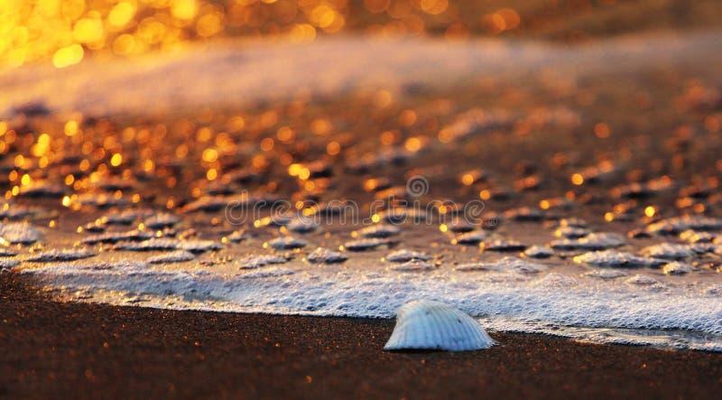 plażowy wschód słońca obrazy royalty free