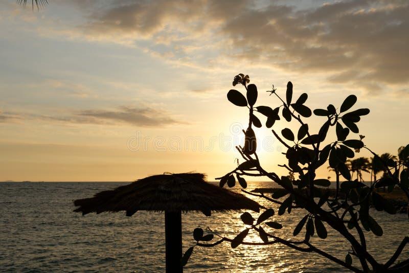 Plażowy zmierzch w Fiji fotografia royalty free