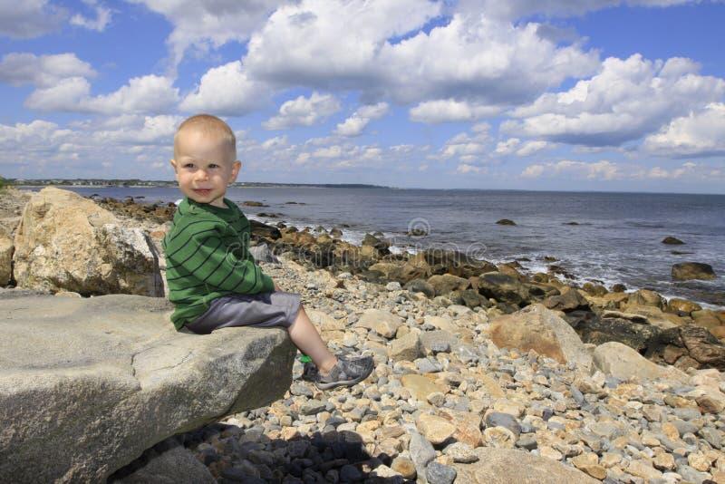 Download Plaża obraz stock. Obraz złożonej z żwirowaty, hairball - 13337101