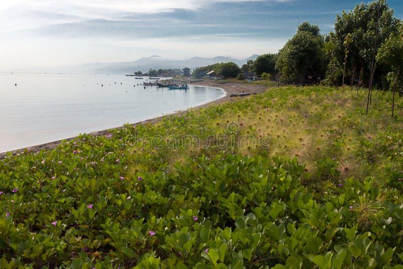 Download Plaża Krajowy Zachodu Park W Bali Obraz Stock - Obraz złożonej z preria, indonezja: 106924151