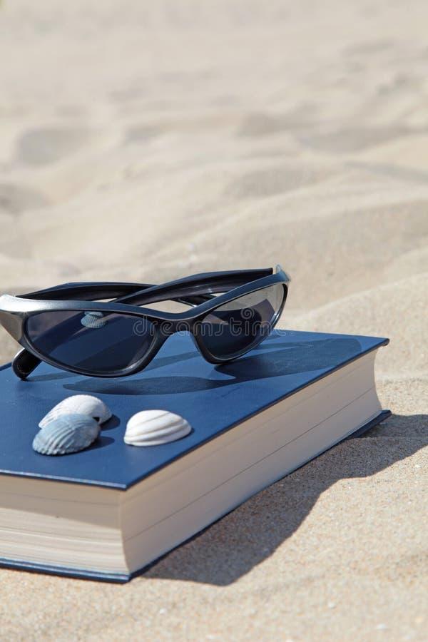 Download Plażowy odtwarzanie zdjęcie stock. Obraz złożonej z sunglasses - 10666956