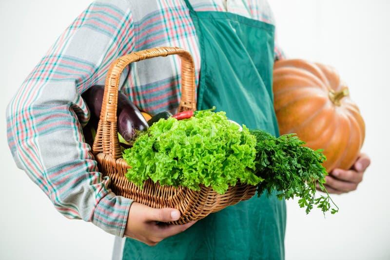 Plaatselijk gekweekt voedsel De landbouw en landbouw Van de de schortgreep van de landbouwersslijtage de pompoen witte achtergron stock fotografie