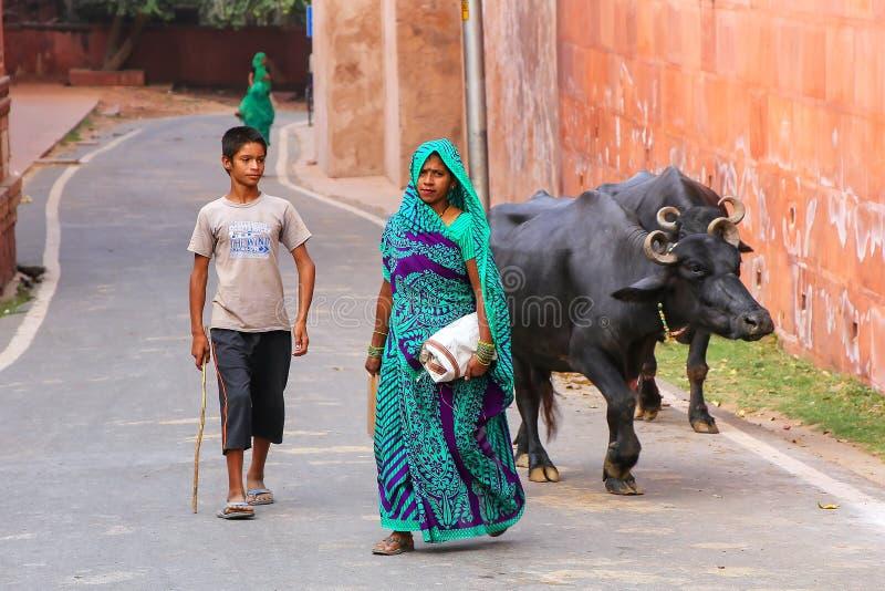 Plaatselijke bevolking die met waterbuffel buiten Taj Mahal-Com lopen stock foto's