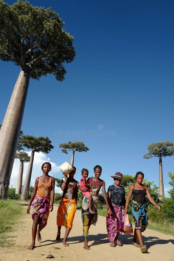 Plaatselijke bevolking en baobabbomen in Morondava, Madagascar stock fotografie