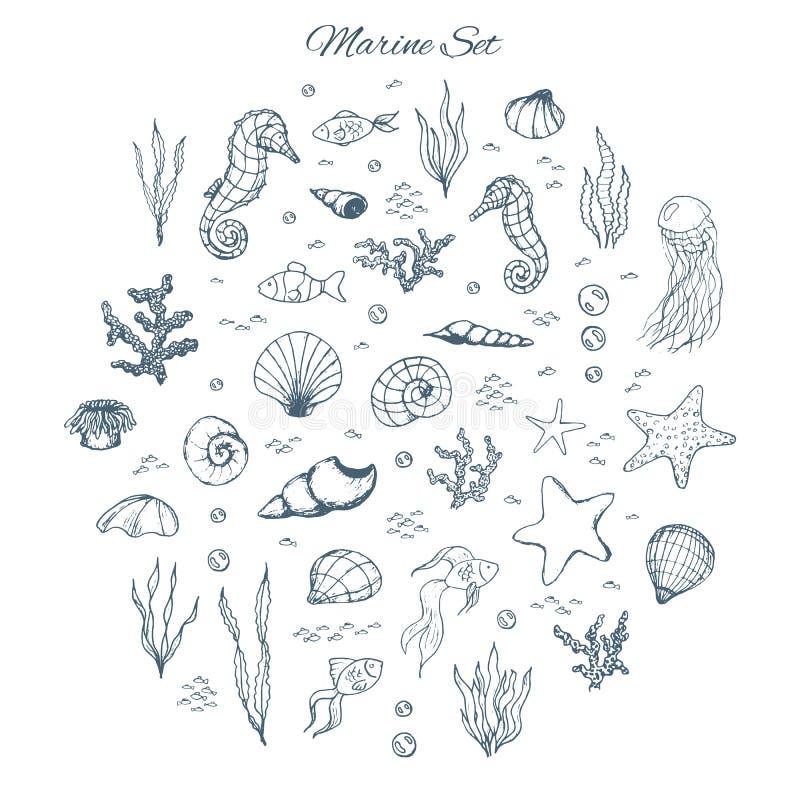 Plaatste de hand getrokken vectormarine met seahorses, shells, sterren, seaw stock illustratie