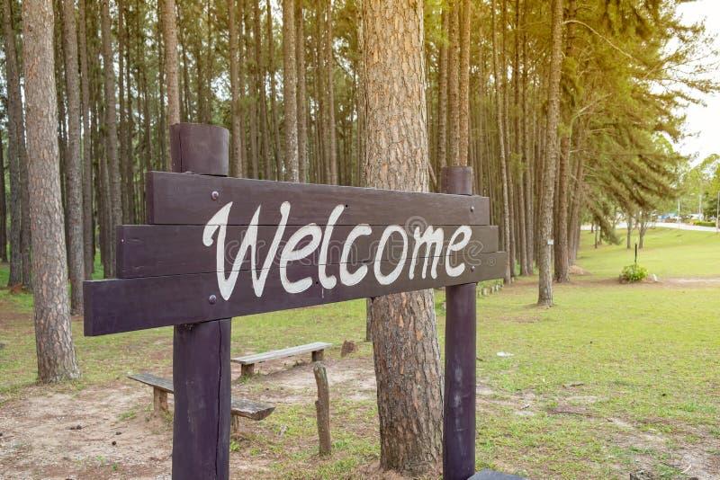 placa bem-vinda feita de madeira imagens de stock