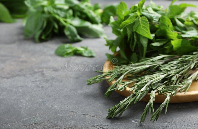 Placa com as ervas verdes frescas na tabela imagens de stock