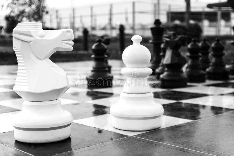 Placa com grande xadrez exterior A figura do cavalo Jogos dentro fotografia de stock