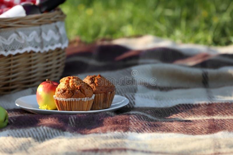 Placa com os queques saborosos preparados para o piquenique no parque fotos de stock