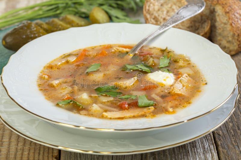 Placa com sopa tradicional do russo fotos de stock