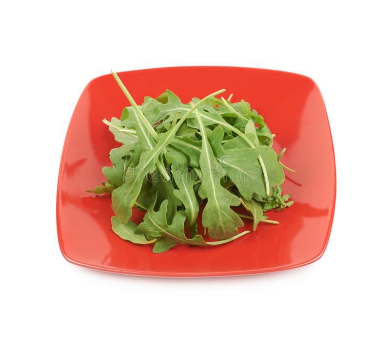 Placa completamente das folhas da salada de foguete isoladas imagens de stock royalty free