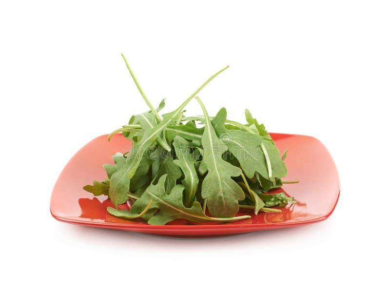 Placa completamente das folhas da salada de foguete isoladas fotos de stock