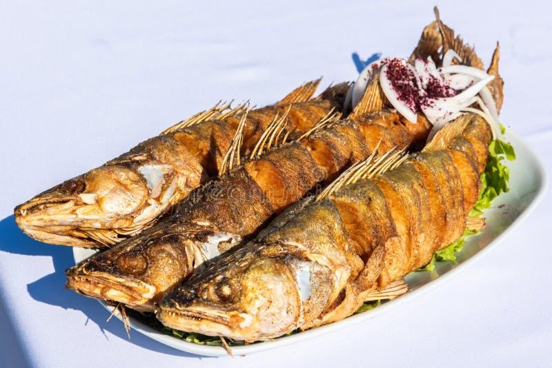 Placa con tres pescados de la lucio-perca imágenes de archivo libres de regalías