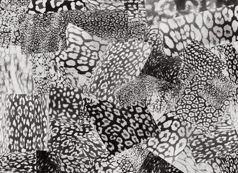 Placa criativa do humor da arte A colagem contemporânea feito a mão feita dos compartimentos e do papel colorido cortou grampeame ilustração stock