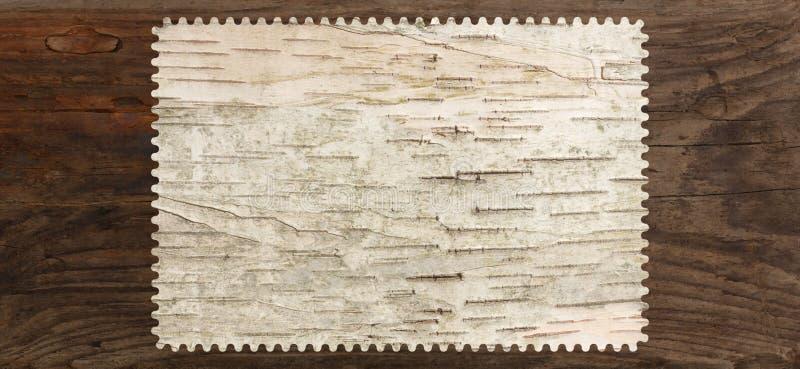 Placa da árvore da textura da casca de vidoeiro fotos de stock royalty free