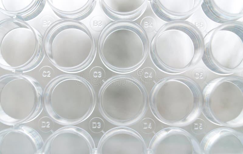 Placa da análise laboratorial imagens de stock