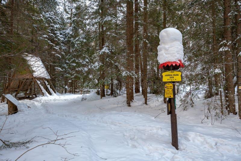 Placa da neve coberta com a neve imagem de stock