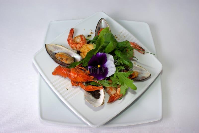 Placa da refeição de jantar fina imagens de stock