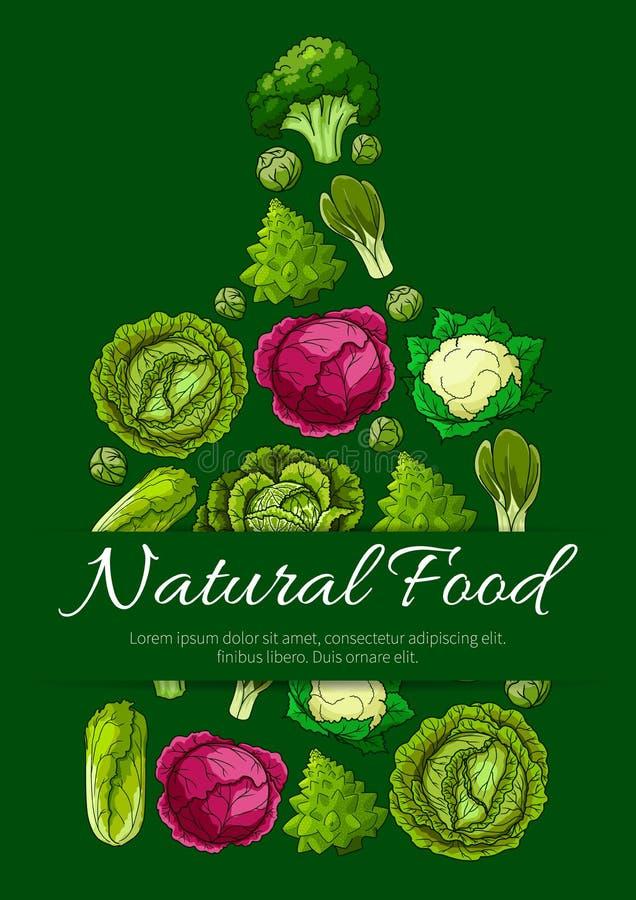 Placa de corte com o vário vegetal da couve ilustração royalty free