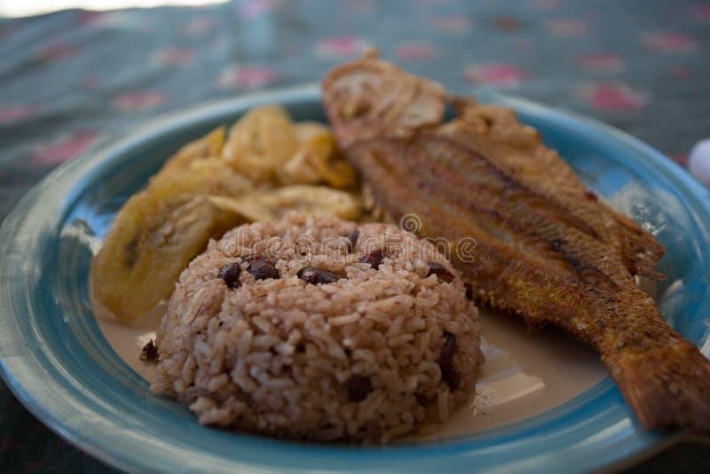 Placa de jantar azul que mostra o arroz, feijões, peixes, estilo do garifuna pronto para ser servido fotos de stock