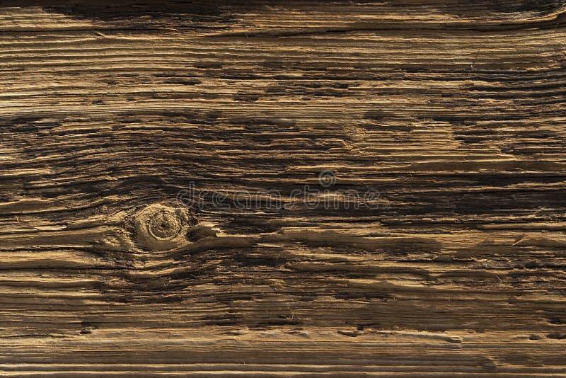 Placa de madeira extremamente Textured e resistida foto de stock royalty free