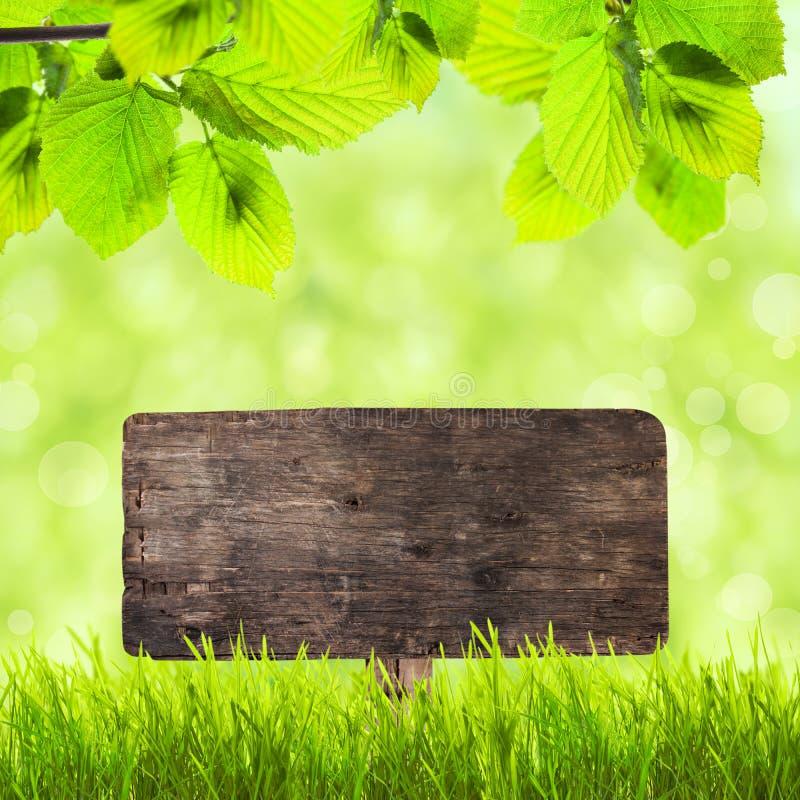 Placa de madeira sobre a grama verde fotografia de stock royalty free