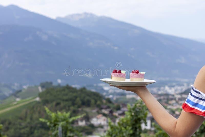 Placa de mantimento fêmea da mão com os bolos sobre o vinhedo imagens de stock