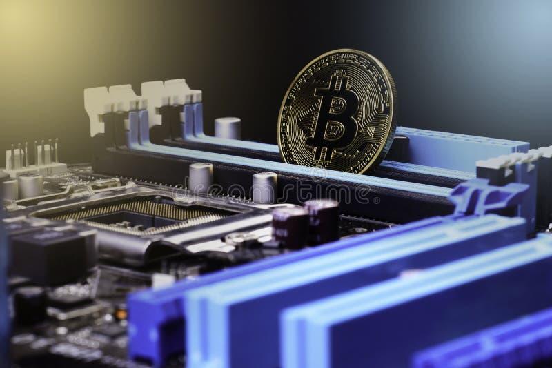 Placa de processador do computador eletrônico de Bitcoin do ouro fotos de stock royalty free