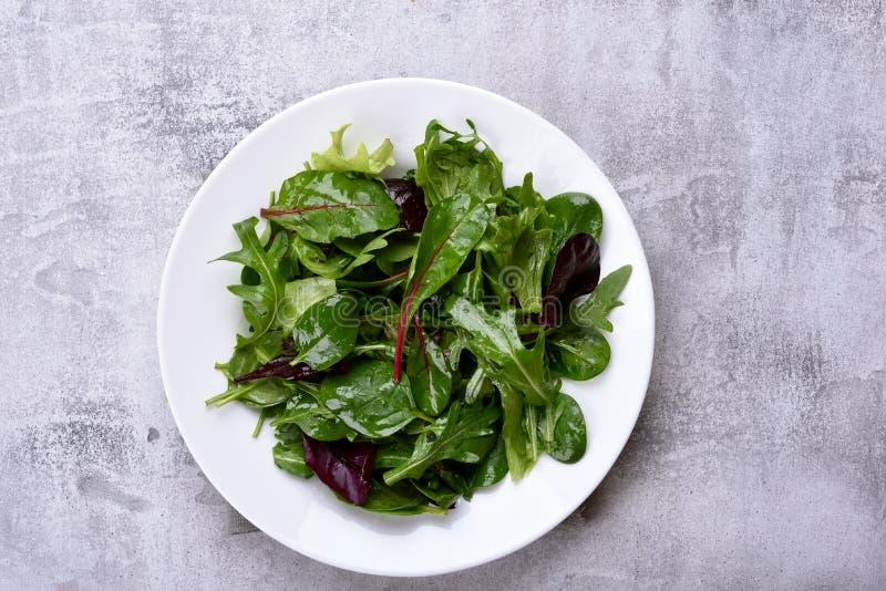 Placa de salada com verdes misturados fotografia de stock