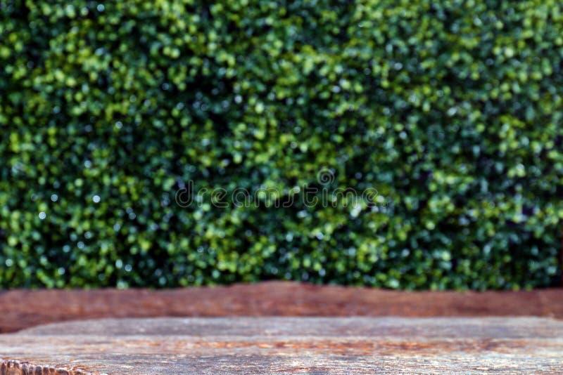 A placa de tabela de madeira velha esvazia na placa dianteira, de madeira da prancha no fundo do verde da natureza do bokeh, part foto de stock